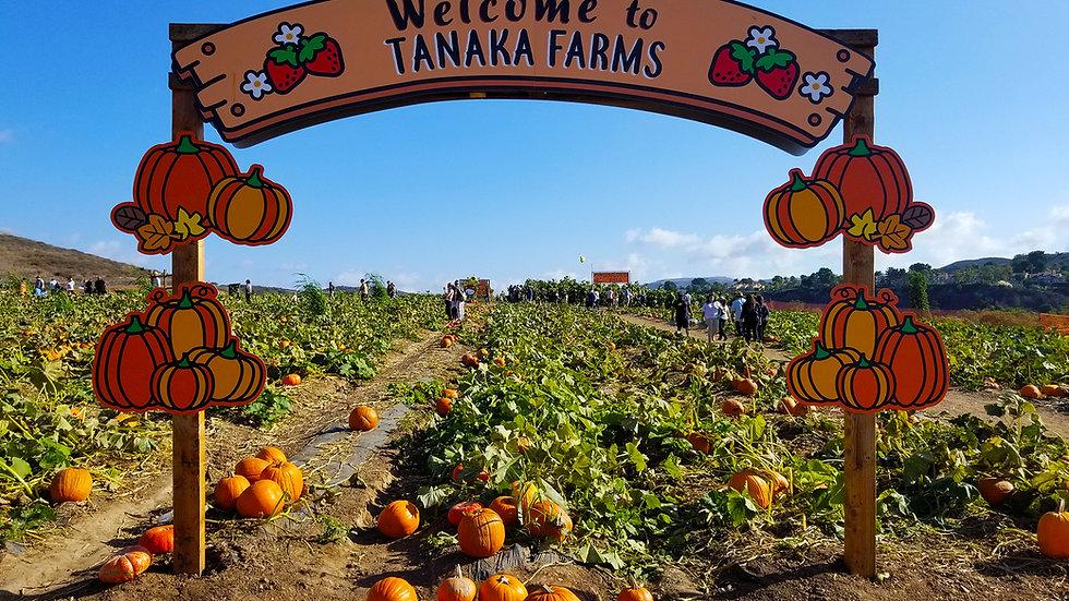 Tanaka Farm