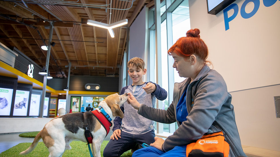 Annenberg PetSpace Kids Camp