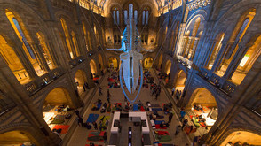 Spend a night at the Natural History Museum LA!