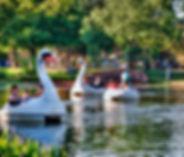 Echo Park Lake.jpg