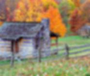 fall Foliage3-min.jpg