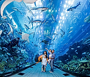 Aquariums near LA