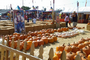 Shawn's Pumpkin Patch - FUN WITH KIDS IN LA