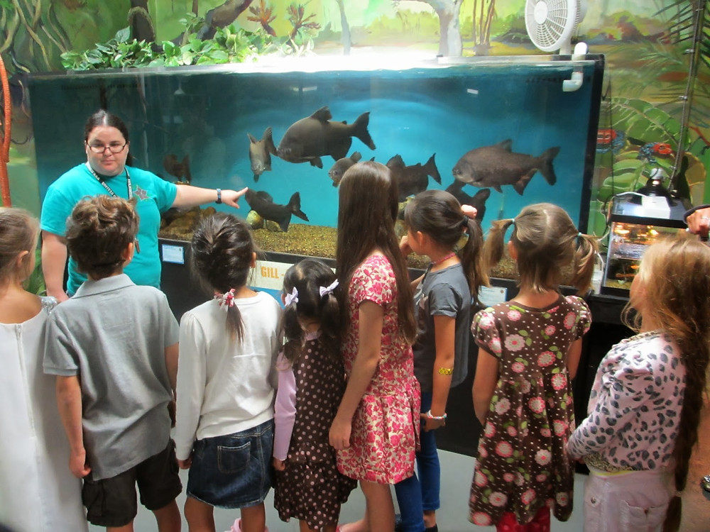 Eco Sation, Rescued Wild Animals | Fun With Kids in LA