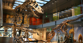 40 Southern California Museums Offer Free Admission on Feb 2nd & 3rd
