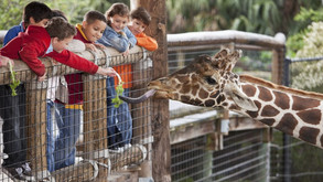 7 SoCal Zoos to Visit Before Your Kids Grow Up!