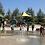 Thumbnail: Rio de Los Angeles State Park
