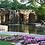 Thumbnail: The Arboretum