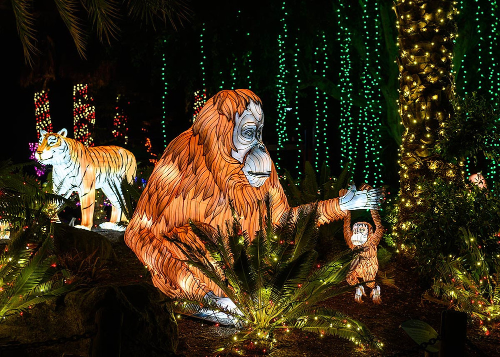 LA Zoo Lights 2019-2020