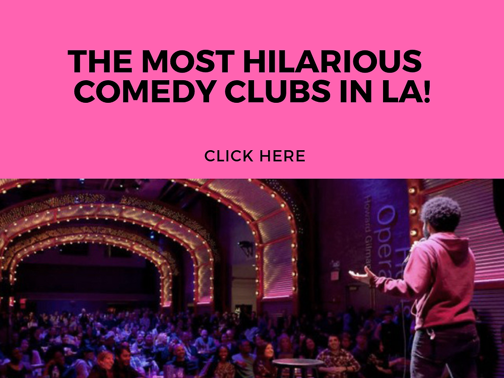 THE MOST HILARIOUS COMEDY CLUBS IN LA - FUN WITH KIDS IN LA