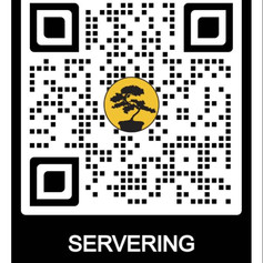 Elektronisk servering 2020