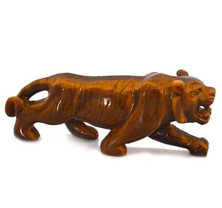 Tigerauge-Tiger