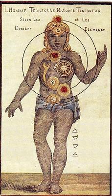 Paracelsus Anatomie.jpg