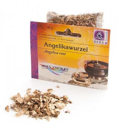 Angelikawurzel (Angelica archangelica) zum Räuchern