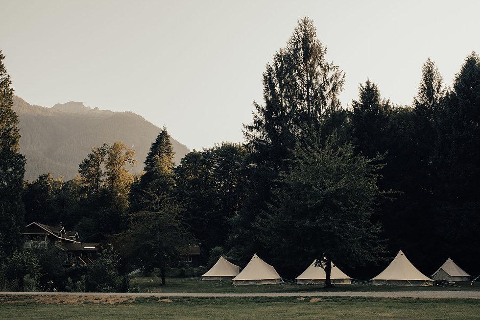 Wild Havens tents.jpg