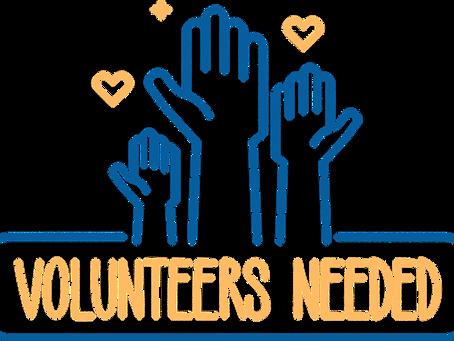 Volunteer Teachers Needed
