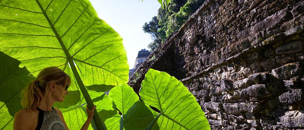 Chiapas-9.jpg