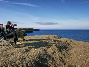 Do Whales Snore? - Península Valdés