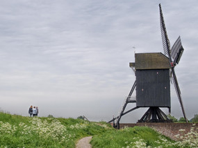 Our Dutch Life in the country: Waalwijk to Friesland