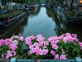 Our Dutch Life in the city: Amsterdam