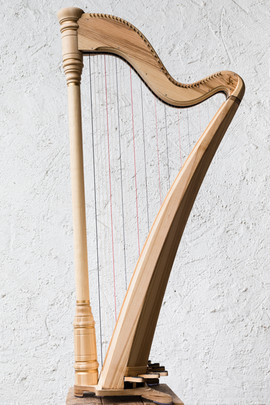 Harfen-11.jpg