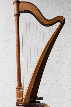 Harfen-60.jpg