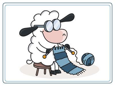sheep-to-shawl.jpg