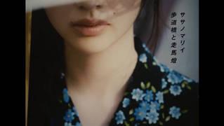 """ササノマリィ """"歩道橋と走馬燈"""""""