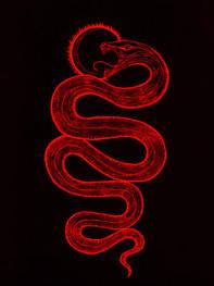 Nachash El Acher, Saint Serpent