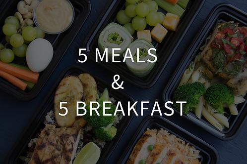 5 BF + 5 Main Meals