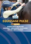 Scientifically Proven Equissage Pulse Brochure