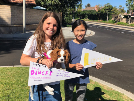 We did a lemonade stand to support Dancer Against Cancer foundation!!!