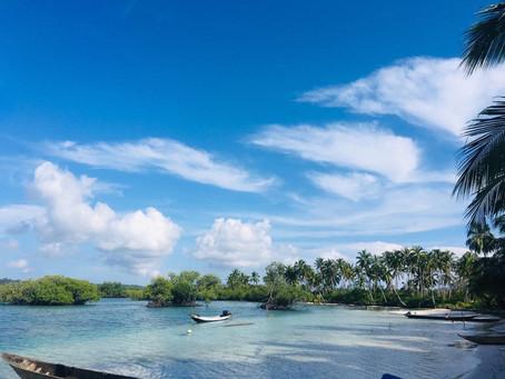 Mentawai experience  Travel Indonesia