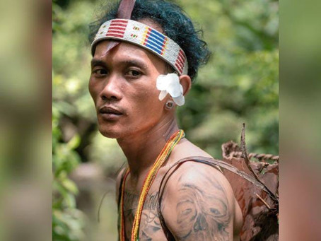 I also work as a Mentawai language translation tOEnglish languagefor company movies about the cul