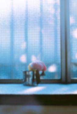 Shonosuke Honma MORNING.jpg