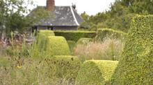 GREEN BALADE #2: Jardin Plume
