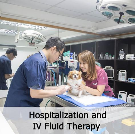 住院和靜脈輸液治療