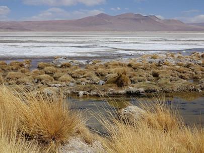Paso de Jama - San Pedro de Atacama