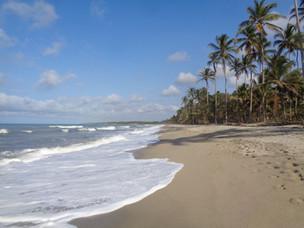 Côte Mer des Caraïbes