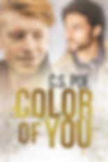 ColorOfYouFS_v1.jpg