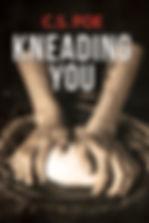 KneadingYouFS_v1.jpg
