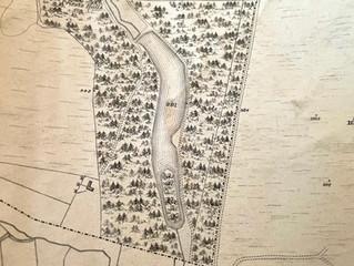 Powerscourt's Paddock Ponds - a short history!