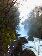 Vartry River, Co Wicklow