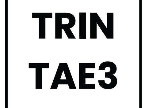 TRINTA E 3: A marca que mostra que ser cool é ser sustentável