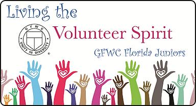 volunteer spirit.png