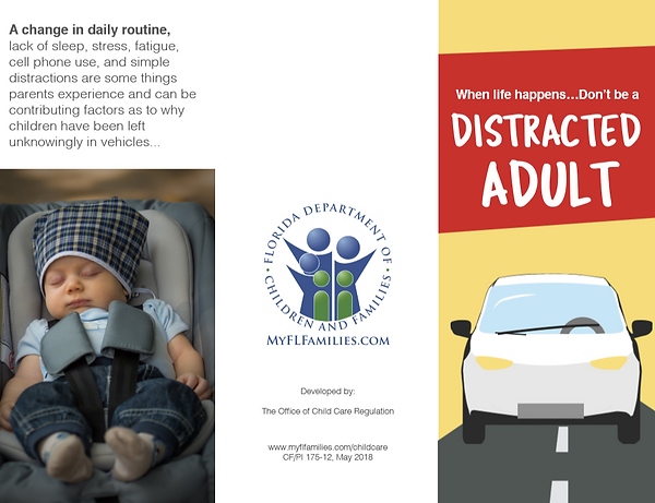 Distracted Driver - 1.PNG