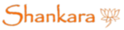 logo Shankara hd orange .png