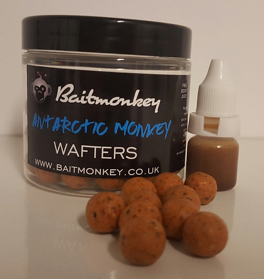 ANTARTIC MONKEY WAFTERS
