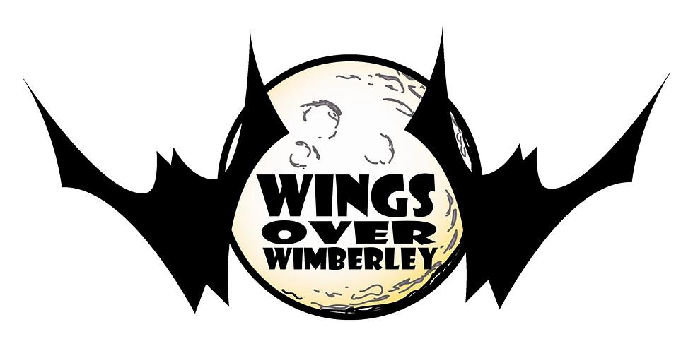 Wings Over Wimberley