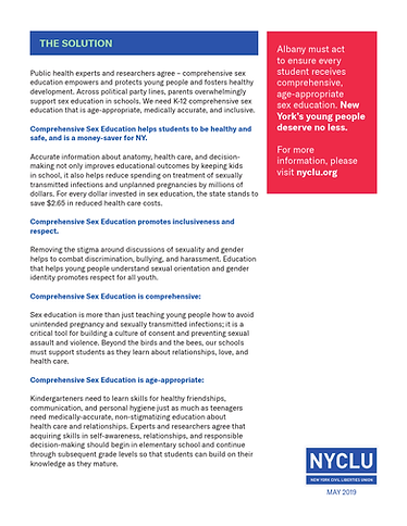 CSE One Pager NYCLU (1) (1)_002 - 2.png